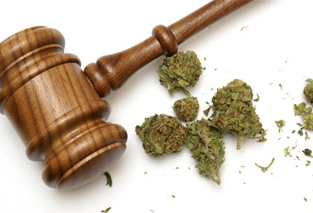 pot possession conviction on your criminal record