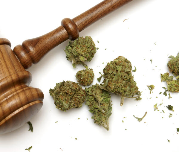 pardons-canada-pot-possession-conviction