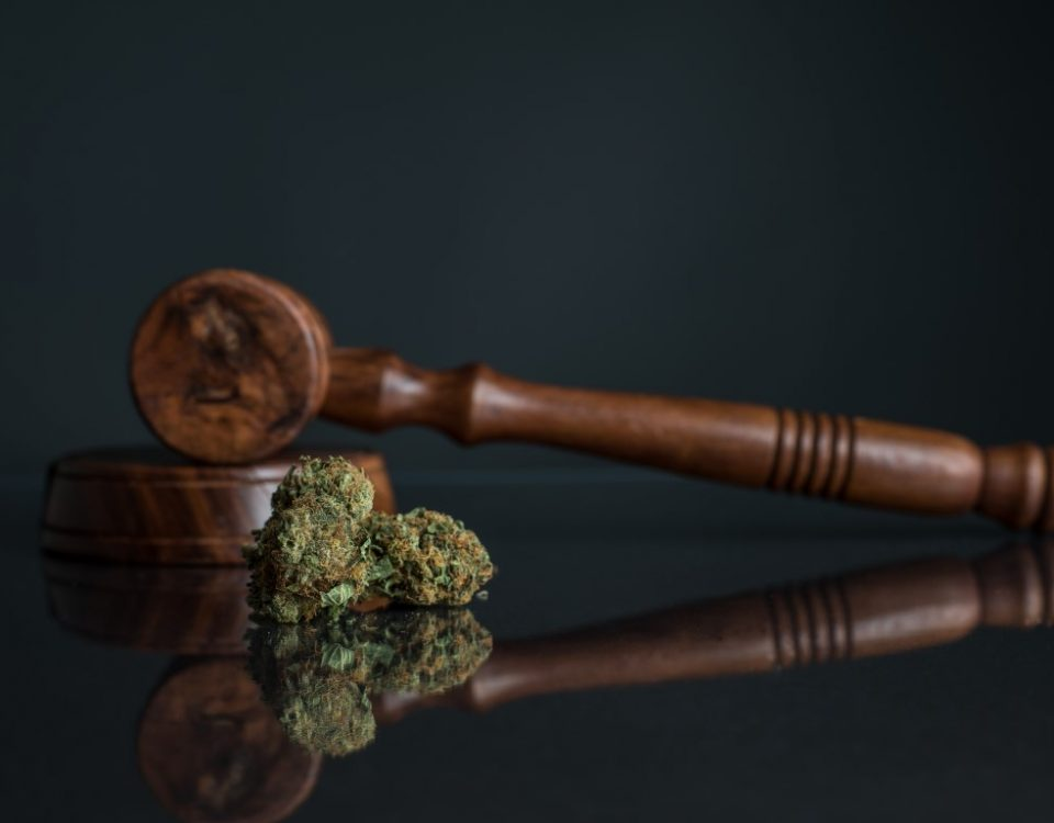 Image depicts a marijuana bundle and a gavel.
